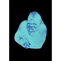 Quindici, Il Gorilla serigrafia